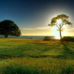 Nature Wallpaper – Free Nature Desktop Wallpapers
