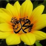 name_of_muhammad_pbuh_wallpaper_2013