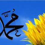 HD Muhammad (PBUH) Name - Islamic Wallpaper 2013 Collection For Desktop 05