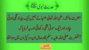Hadith - Hadith-e-Nabvi (PBUH) Collections