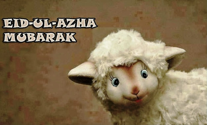 bakra eid mubarak images images for eid mubarak eid mubarak