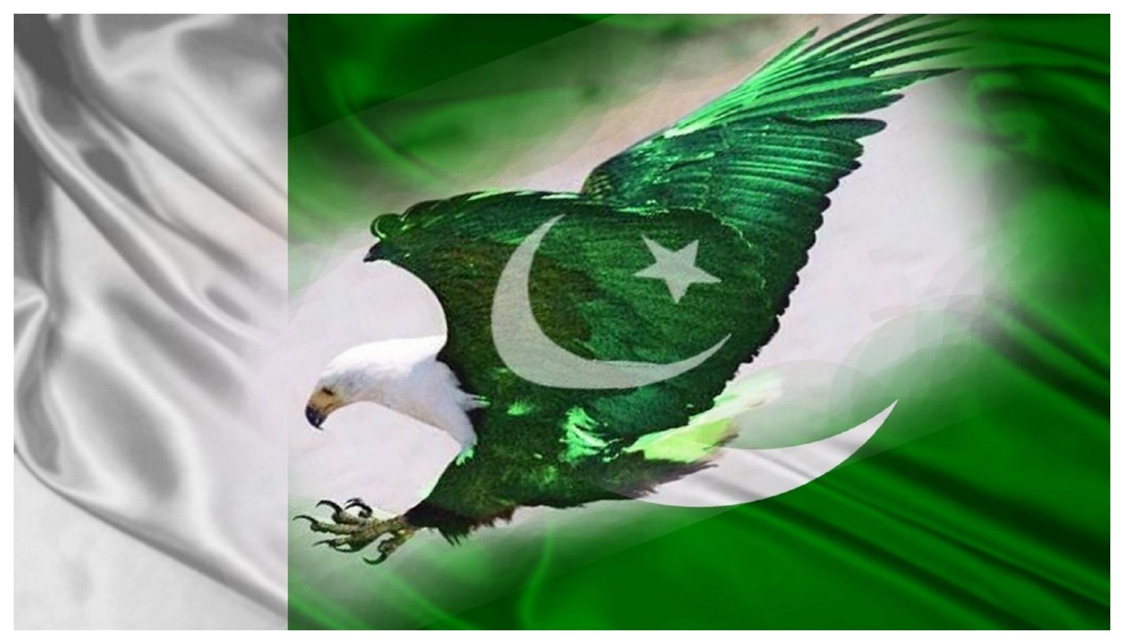 Pakistan National Flag HD
